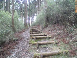 箱根の散策中に携帯で撮影