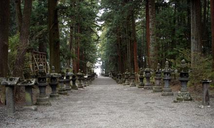 ▲参道に並ぶ石灯籠。歴史が感じられる景色です。