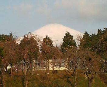 富士山の麓から